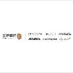Belle Worldwide (Talent Management) Limited logo